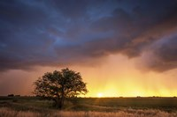Stormy Sunset Fine-Art Print