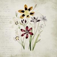 Wild Flowers One Fine-Art Print