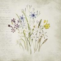 Wild Flowers Three Fine-Art Print