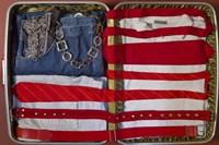 American Suitcase Fine-Art Print