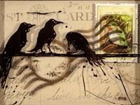 Curious Birds Fine-Art Print