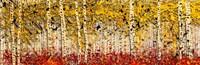 Fall Panoraspen Fine-Art Print