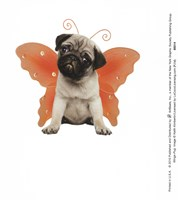 Wings - Pug Fine-Art Print