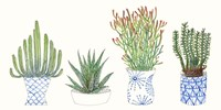 Four Succulents I Fine-Art Print