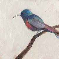 Bird Profile I Fine-Art Print