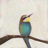 Bird Profile II Fine-Art Print