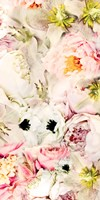 Bouquet Fluffy I Fine-Art Print