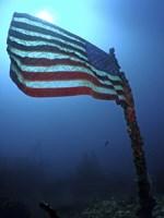 American Flag on a Sunken Ship in Key Largo, Florida Fine-Art Print