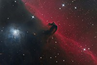 The Horsehead Nebula in the Constellation Orion Fine-Art Print