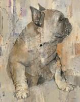 Duke Fine-Art Print