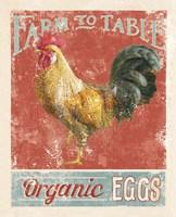 Farm Nostalgia V Fine-Art Print