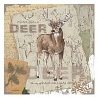 Deer Play Fine-Art Print