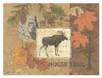 Moose Trail Fine-Art Print