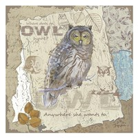 Owl Hoot Fine-Art Print