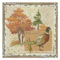 Pheasant Postcard Fine-Art Print