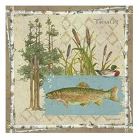 Trout Postcard Fine-Art Print