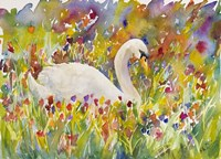 Colorful Swan Fine-Art Print