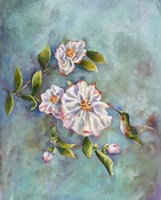 Hummingbird with Camellias Fine-Art Print