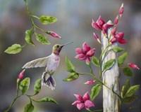 Hummingbird with Flowers Fine-Art Print