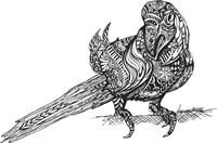 Birdy Fine-Art Print