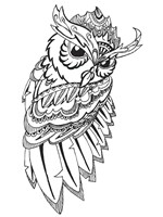 Flashing Owl Fine-Art Print