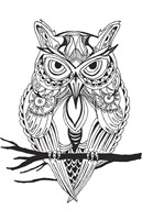 Mean Owl Fine-Art Print