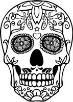 Skull 20 Fine-Art Print
