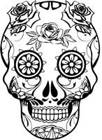 Skull 22 Fine-Art Print