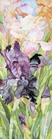 Black Iris Fine-Art Print