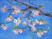 Cherry Blossoms Fine-Art Print