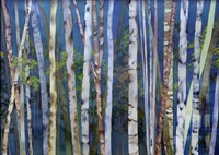 Mystery Of Trees-Birches Fine-Art Print