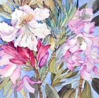 Rhododendron I Fine-Art Print