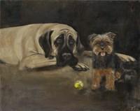 Yorky and Mastif Fine-Art Print