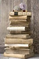 Books I Fine-Art Print