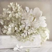 White Flower Book Fine-Art Print