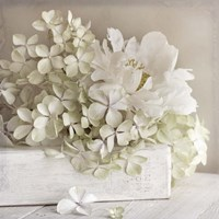White Flower Book Fine-Art Print