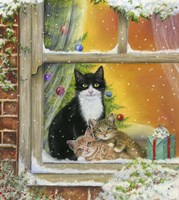 Christmas Window Fine-Art Print
