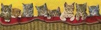 Eight Kittens In Basket Fine-Art Print