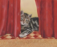 Favourite Hiding Place Fine-Art Print