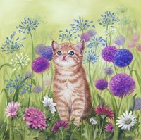 Ginger Kitten In Flowers Fine-Art Print