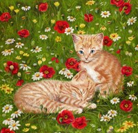 Ginger Kittens In Red Poppies Fine-Art Print