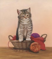Kitten And Wool Basket Fine-Art Print
