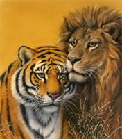 Lion & Tiger Fine-Art Print