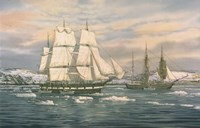 The Whaling Station Fine-Art Print
