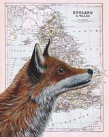 British Fox Fine-Art Print