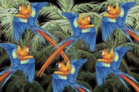 Palm Parrot Fine-Art Print
