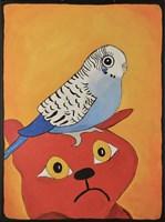 Cat Bird Fine-Art Print