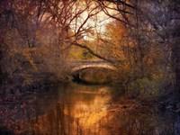 Autumn Finale Fine-Art Print