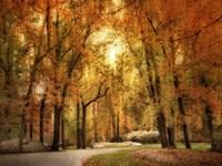 Autumn Impressions Fine-Art Print