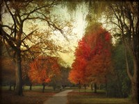 Autumn Promenade Fine-Art Print